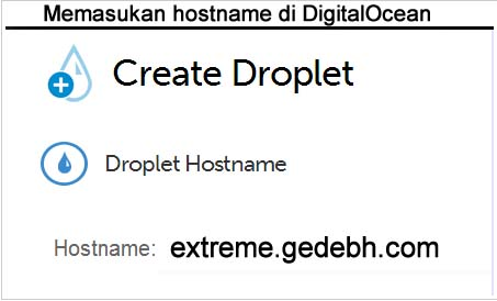 Hostname Digitalocean